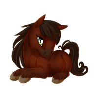 Bay Unicorn Baby