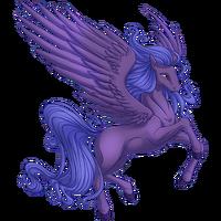 Dusk Pegasus