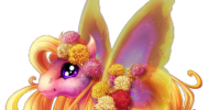 Chrysanthemum Spring Fairy