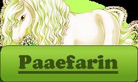 Paaefarin Button Spring