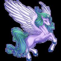 Wisteria Pegasus