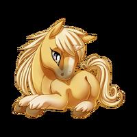 Palomino Unicorn Baby