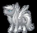 Flurries Pegasus