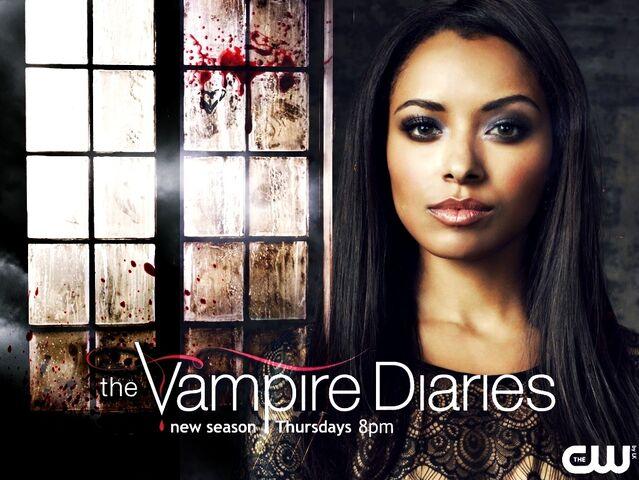 File:Season-4-promo-wallpaper-the-vampire-diaries-32578921-1023-768.jpg