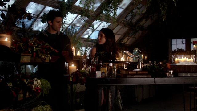 File:The Originals s01e17 HD1080p KISSTHEMGOODBYE NET 1534.jpg