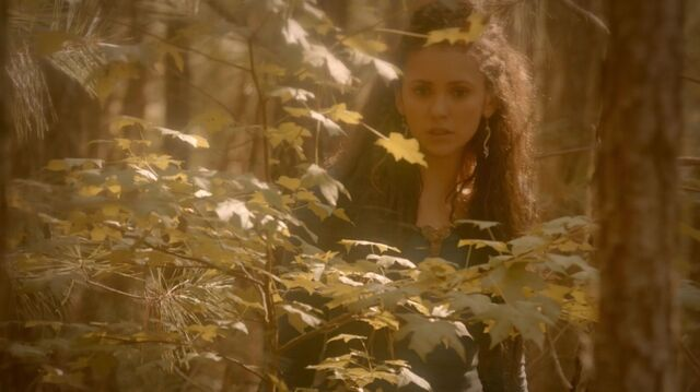 File:Normal TheOriginals205-0979 Tatia.jpeg