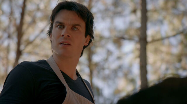 File:715-030-Damon.jpg