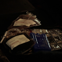 Lexi's supply of blood