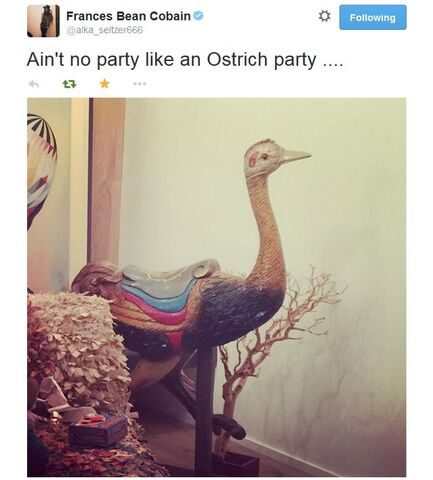 File:Ostrich party.jpg