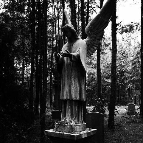 File:Mystic Falls Cemetery.jpg