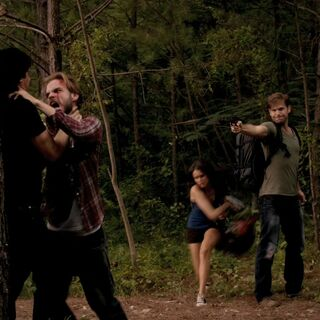 paiges pack the vampire diaries wiki fandom powered