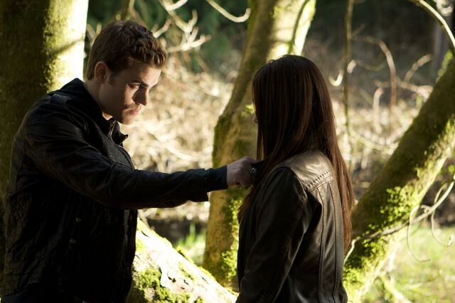 File:Additional-Season-1-Episode-Stills-1x01-stefan-and-elena-16801475-800-532.jpg