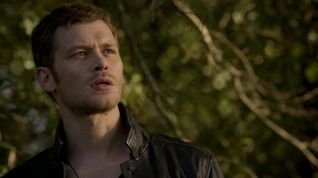 File:Normal TheOriginals207-1047Klaus.jpeg