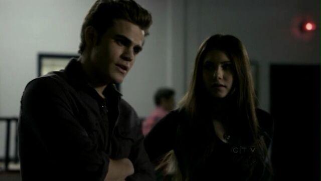 File:Episode-19-Miss-Mystic-Falls-the-vampire-diaries-tv-show-11697546-1248-704.jpg