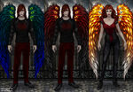 The Feather Wings Set