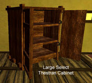 Large Select Thestran Cabinet