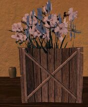 Small wooden planter with white flowers