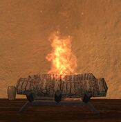 Wood fireplace fire two