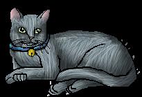 File:Jasmine.housecat.png