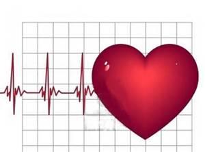 File:Cardiac.jpg