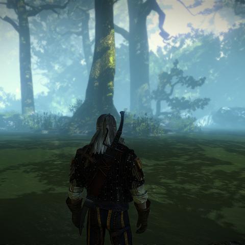 Меч Синих гор в игре Ведьмак 2
