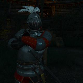 Донимир в шлеме