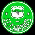 Flamboyants escudo