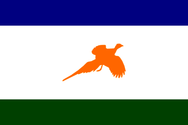 File:SD Proposed Flag Lord Grattan.png