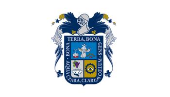 De facto flag of Aguascalientes