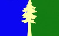 File:OR Flag Proposal Lorraine Bushek.png