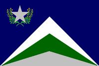NV Flag Proposal Usacelt