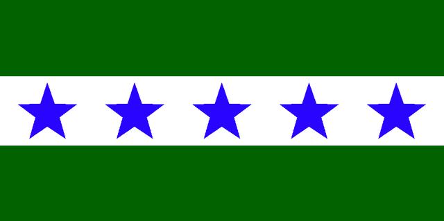 File:MI Flag Proposal N763.png