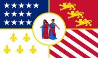 MI Flag Proposal Jack Expo