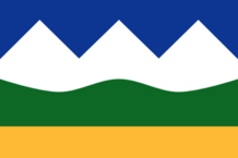 AB Flag Proposal lizard-socks