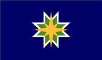JonGood-MNflagB5a1
