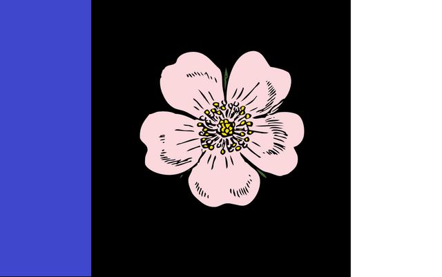 File:AB Flag Propopsal Robo-Diglet.png
