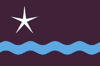 ID Flag Proposal ironchefshark