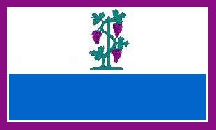 File:CT Proposed Flag VoronX 4.png