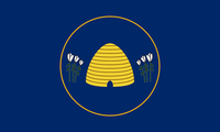 UT Flag Proposal lunarmotion-1