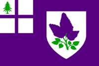 NH Flag Proposal Leoninia