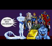 Wolverine - Adamantium Rage (USA).031