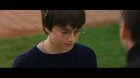 Harry Potter and the Sorcerer's Stone - The golden snitch