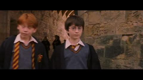 Harry Potter and the Sorcerer's Stone - Hagrid's mistake