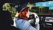 Roundabout - Trailer - E3 2014