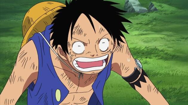 File One Piece - Episode 405 - Eliminated Friends – The Final Day of the Straw Hat Crew