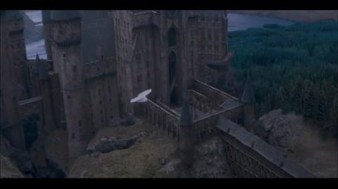 Harry Potter and the Order of the Phoenix - Loneliness