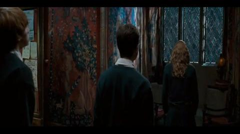 Harry Potter and the Order of the Phoenix - Hermione's plan