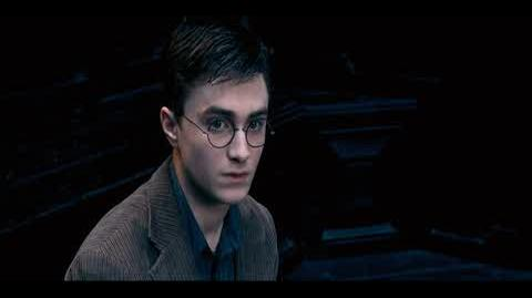 Harry Potter and the Order of the Phoenix - The witness