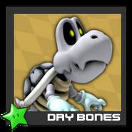 ACL Mario Kart 9 character box - Dry Bones