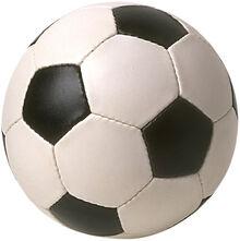 Futbol pelota.jpg